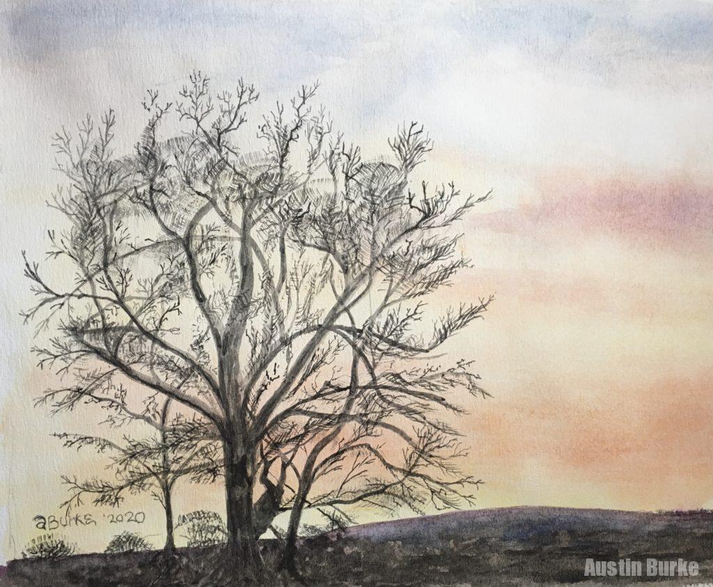 Gregg's Tree, Judy's Sunset